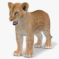 lion modeled 3D