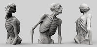 Zombie Half Body