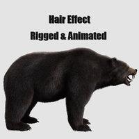 bear grizzly hair 3D