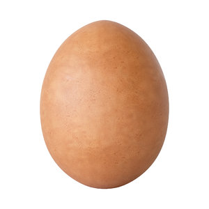 brown egg 3D model