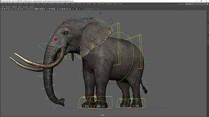 elephant rig 3D