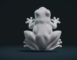 3D frog model