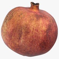 pomegranate 01 3D model