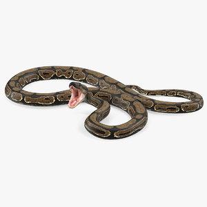 3D brown python snake rigged model
