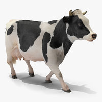 3D cow walking animal rigged