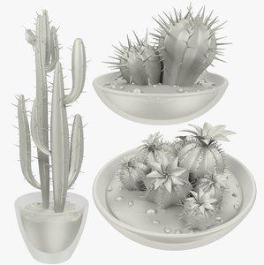 cactuses pots cactus v1 3D model