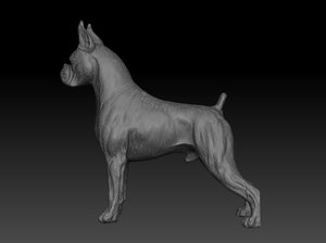 great dane 3D model