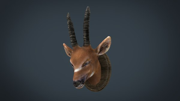 african antelope mount 3D model