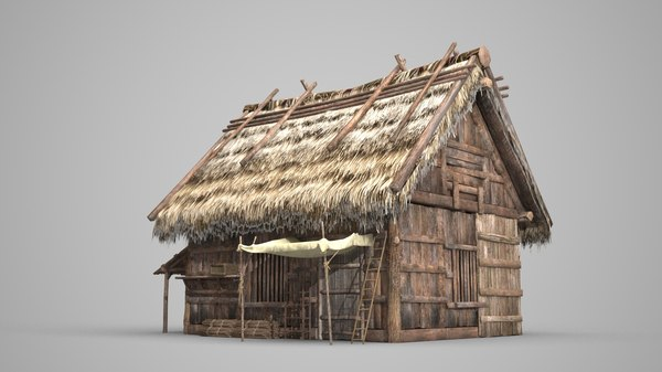 3D ancient thatched dwelling