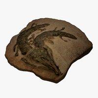 3D crocodile fossil