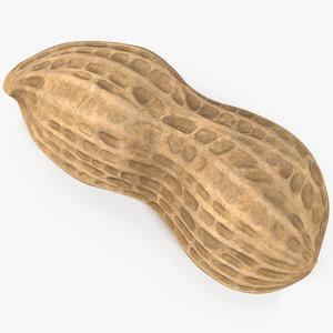 peanut 1 3D model