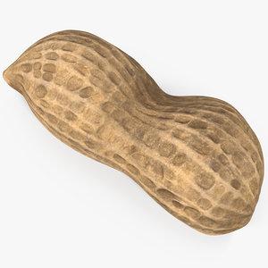peanut 3 3D