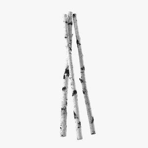 birch branches 3D model
