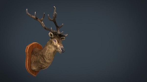 deer trophy model