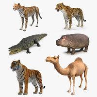 3D african animals 3