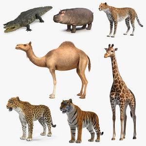 3D african animals 4
