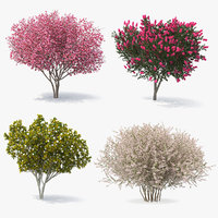 3D model flowering bushes trees 2