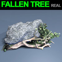 fall tree 3D