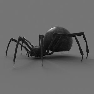 red spider animation 3D model