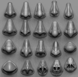 3D 20 noses model