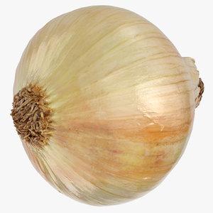 onion yellow 02 3D