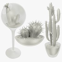 3D cactuses pots cactus