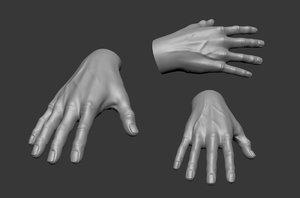 3D model realistic male hand