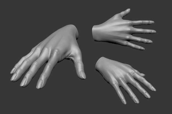 3D model realistic female hand