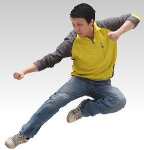 3D model fly kick