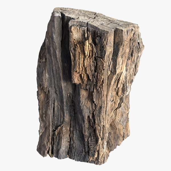 3D tree bark scanned model