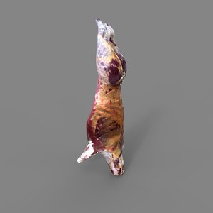 3D model food meat