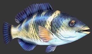 3D parrot fish