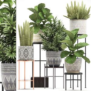 plants exotic 3D model
