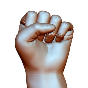 3D fist knuckle hand gesture model