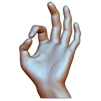 OK okay sign male hand
