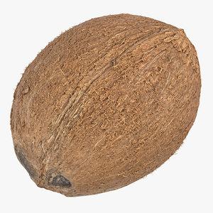 3D coconut 01
