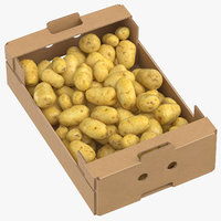 Cardboard Box 02 With Clean Potatoes Full