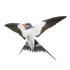 3D model realistic barn swallow hirundo