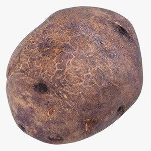 3D purple potato 01 model