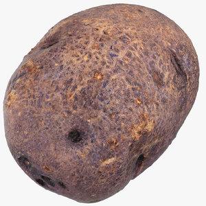 purple potato 02 3D model