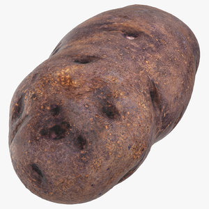 3D purple potato 04