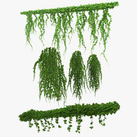 ivy branches hanging 3D model