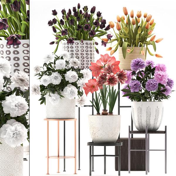 3D flowers pots