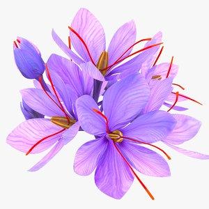 3D crocus blossom