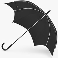 3D umbrella open model