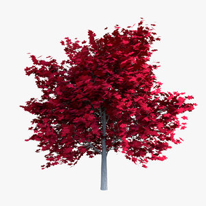 unreal red maple leaf 3D model