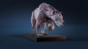 3D digital anatomy atlas artists model
