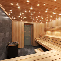 3D model sauna room interior