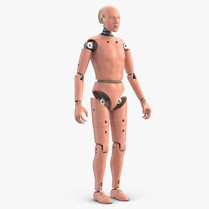crash test dummy 1 3D model