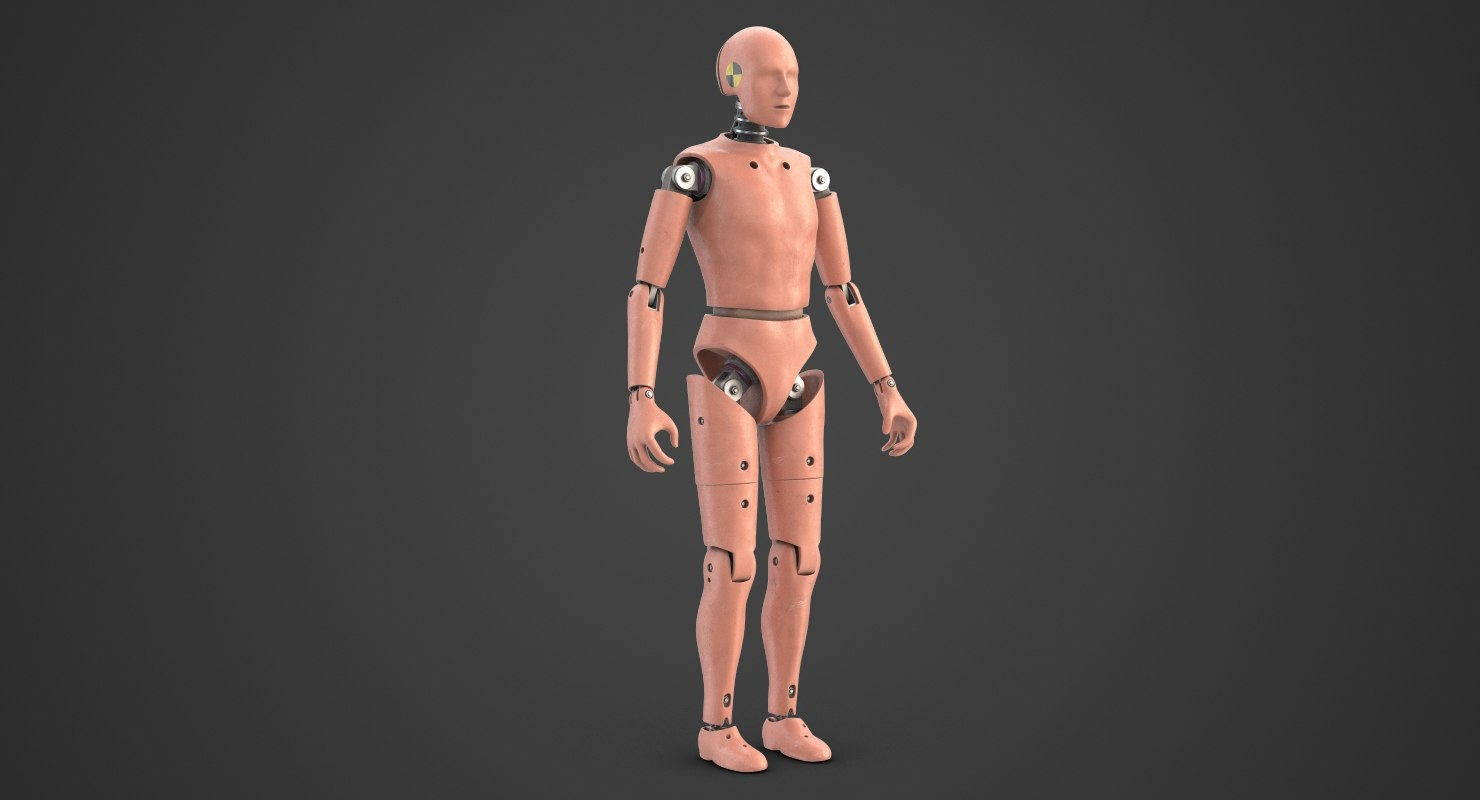 crash test dummy 1 3D model